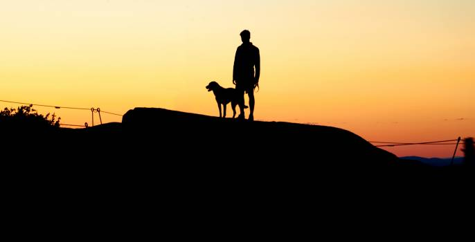 Boy and Dog Silhouette Free Photo #401448