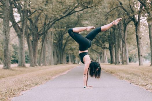 Woman Forest Yoga Pose Free Photo #401686