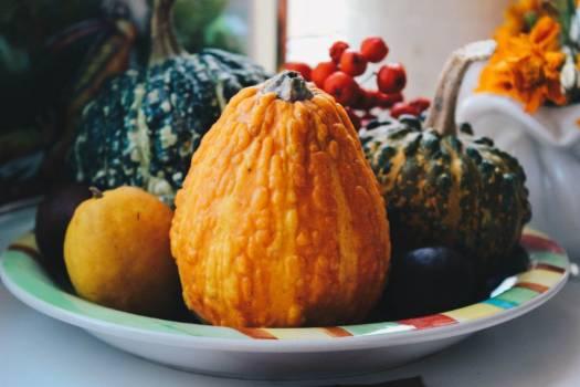 Pumpkin Squash Halloween Free Photo #401932