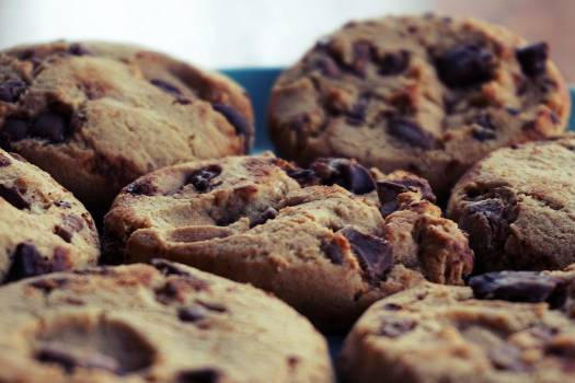 Chocolate Chip Cookies Free Photo #401947