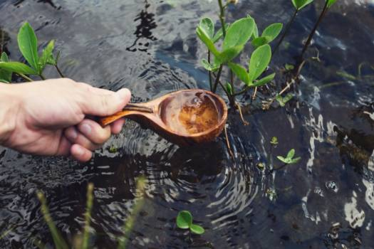 Wooden Spoon Water Free Photo #401958
