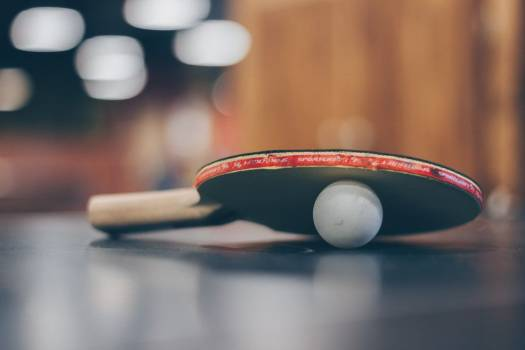 Ping Pong Paddle Ball Free Photo Free Photo