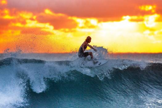 Surfer Wave Ocean Free Photo #402603