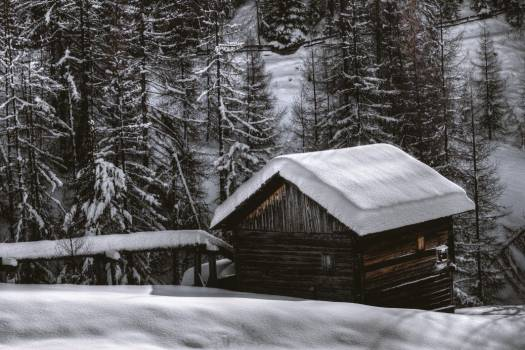 Hut Cabin Snow Forest Winter Free Photo #402659