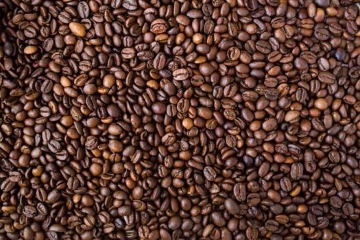 Coffee Beans Free Photo #402737