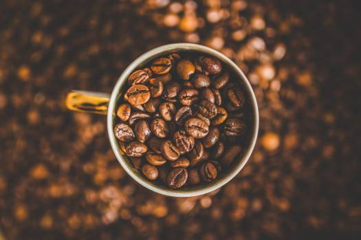 Cup Full of Coffee Beans Free Photo #402813