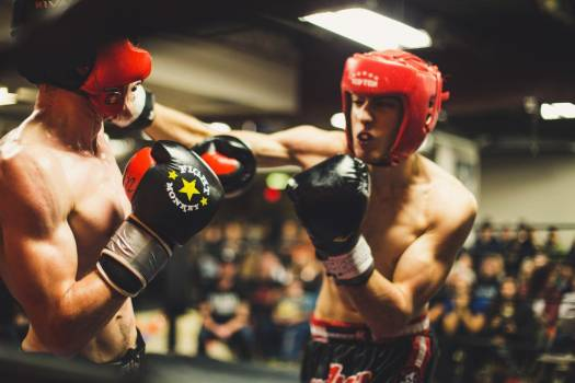 Amateur Boxers Boxing Match Gloves Free Photo #402872