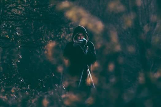 Photographer Camera Forest Man Free Photo Free Photo