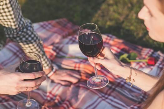 Picnic Blanket Man Woman Wine Free Photo #403053