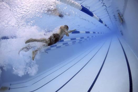 Man Swimming Pool Free Photo #403297