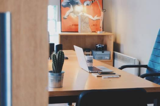 Desk Laptop Cactus Art Poster Free Photo #403303