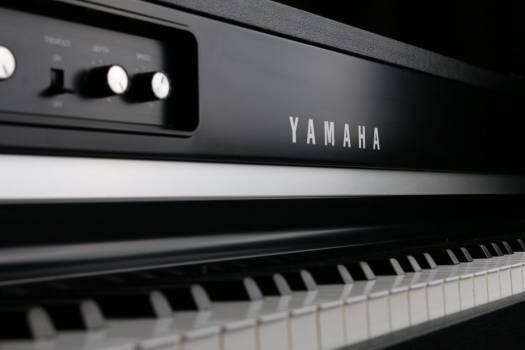 Yamaha Digital Piano Free Photo #403396