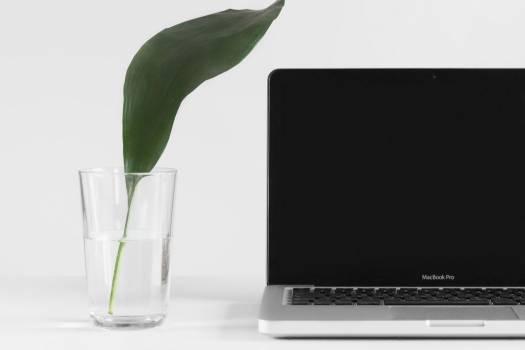 Minimal MacBook Glass Water Free Photo Free Photo