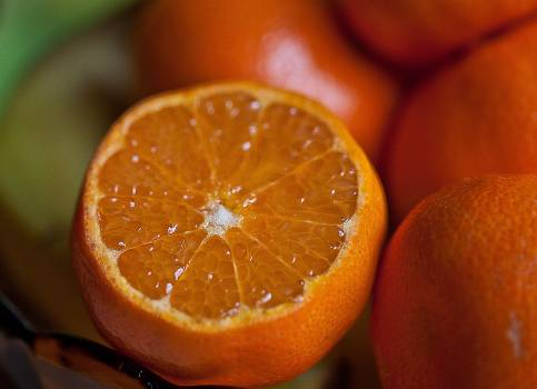 Food healthy fruits oranges #40349