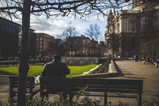 Man Sitting on Bench at Park Free Photo Free Photo