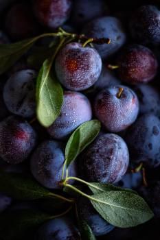 Fruit Food Edible fruit #404234