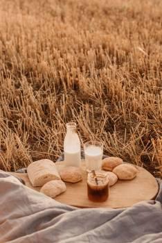 Wheat Cereal Grain #405463