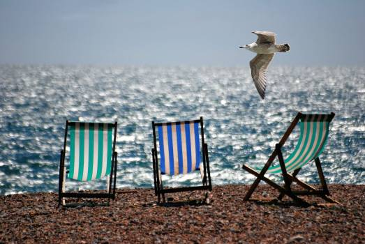 3 Green and Blue Beach Chairs on Brown Sea Shore Free Photo