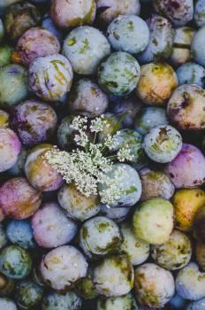 Edible fruit Fruit Produce #406077