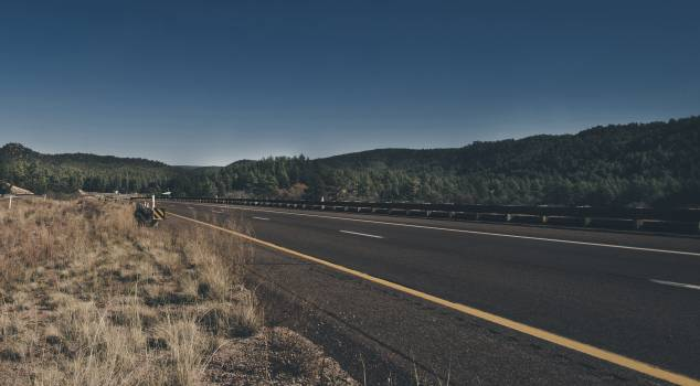 Road landscape mountains trees #40625