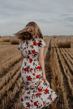 Summer Field Happiness #406303