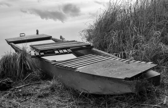 Old wooden punt on the bank of the pond - free stock photo #406761