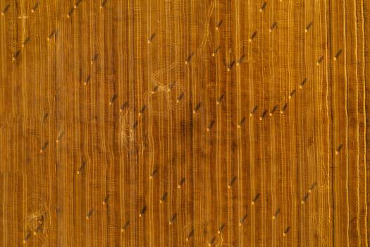 Pine Panel Texture #407649