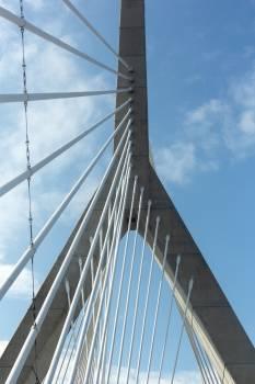Suspension bridge Bridge Structure Free Photo
