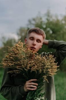 Amaranth Herb Vascular plant #408348