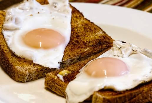 Food toast meal morning #40880