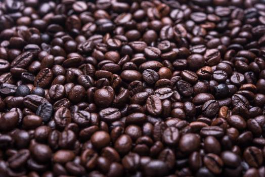 Coffee Beans #408959
