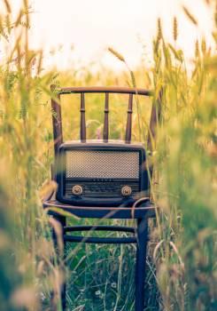 Retro Radio Dial Field Free Photo #408975