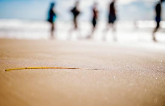 People Beach Sand Blurry Free Photo Free Photo