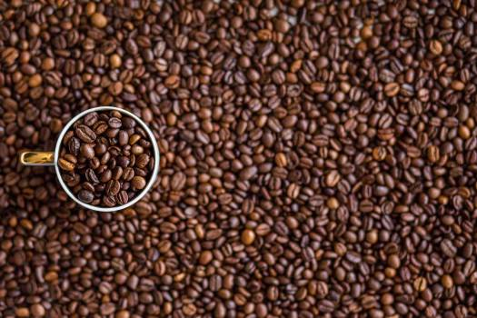 Coffee Cup Full of Beans Free Photo #409093