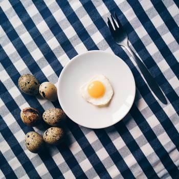 Funny quail egg breakfast Free Photo