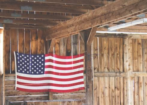 American Flag #409274