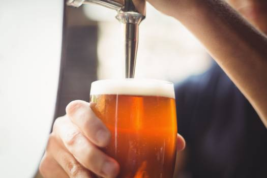 Close-up of bar tender filling beer from bar pump #409850