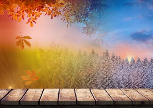 Digital composition of autumn and winter season Free Photo