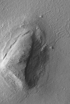 Mars Boulders: On a Hill in Utopia Planitia #410704