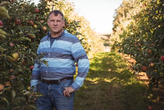 Portrait of farmer standing in apple orchard #410943