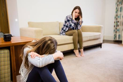 Upset mother and daughter sitting in living room #411009