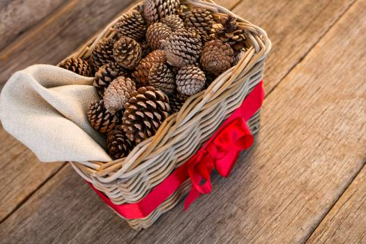 Pine cones in wicker basket tied with red ribbon on wooden plank #411259