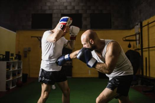 Two boxer practicing boxing in fitness studio #411457