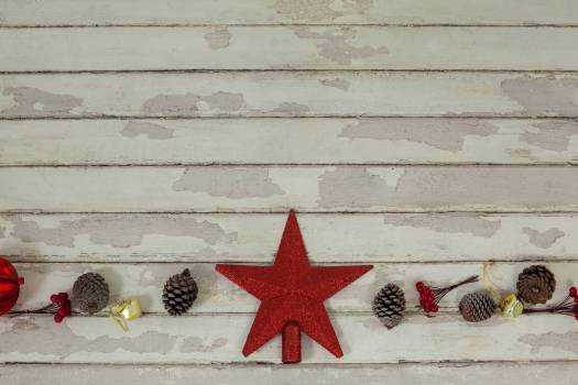 Star shape decoration with pine cone #411757