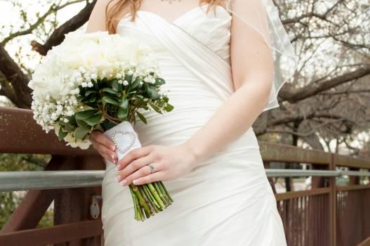 Bridge bouquet bridal bride Free Photo