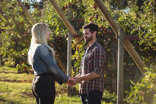 Couple holding hands and standing in apple orchard #412292