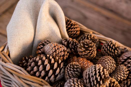 Pine cones in wicker basket on wooden plank #412575