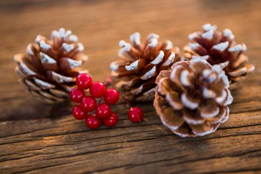 Pine cone with fake snow and cherry on wooden plank Free Photo