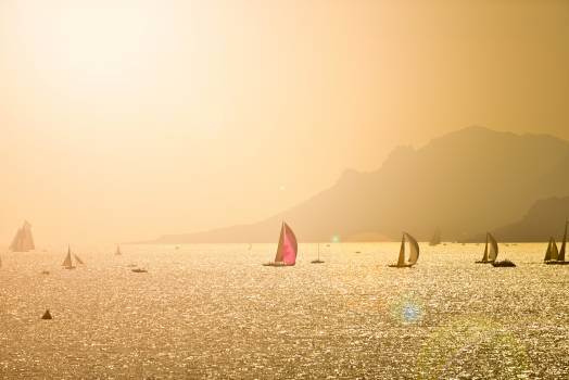 Many Sailing Boats At Sunset With Montain #413206