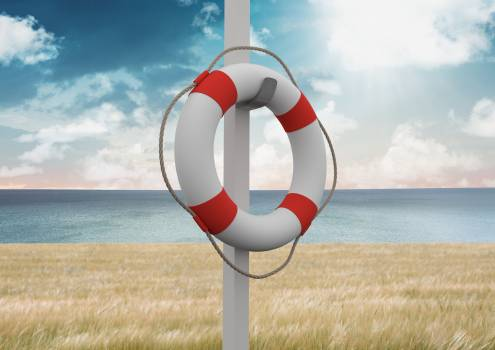 Lifebuoy on a pole against field, sea and blue sky in the background #413216